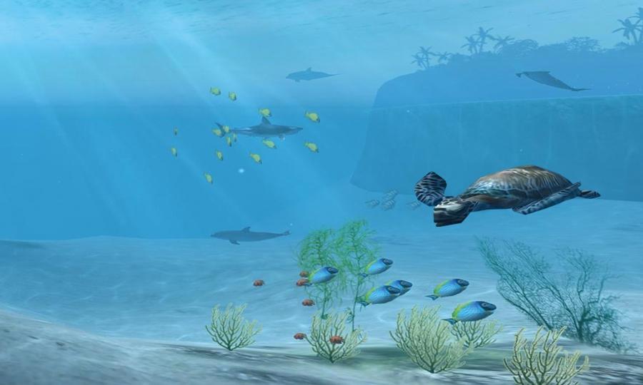 鲨鱼VR图3