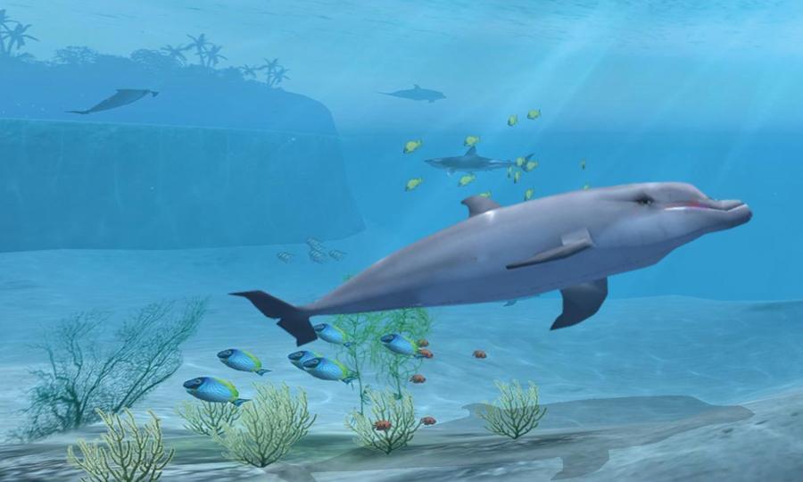 鲨鱼VR图4